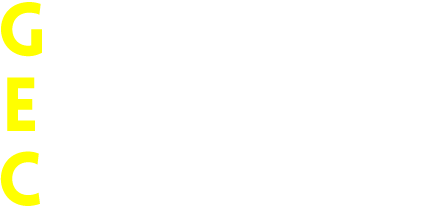 GLOBAL ECOMMERCE COMPANY